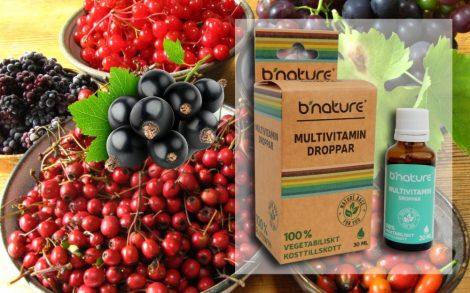 Multivitamin komplex Tropfen 30ml